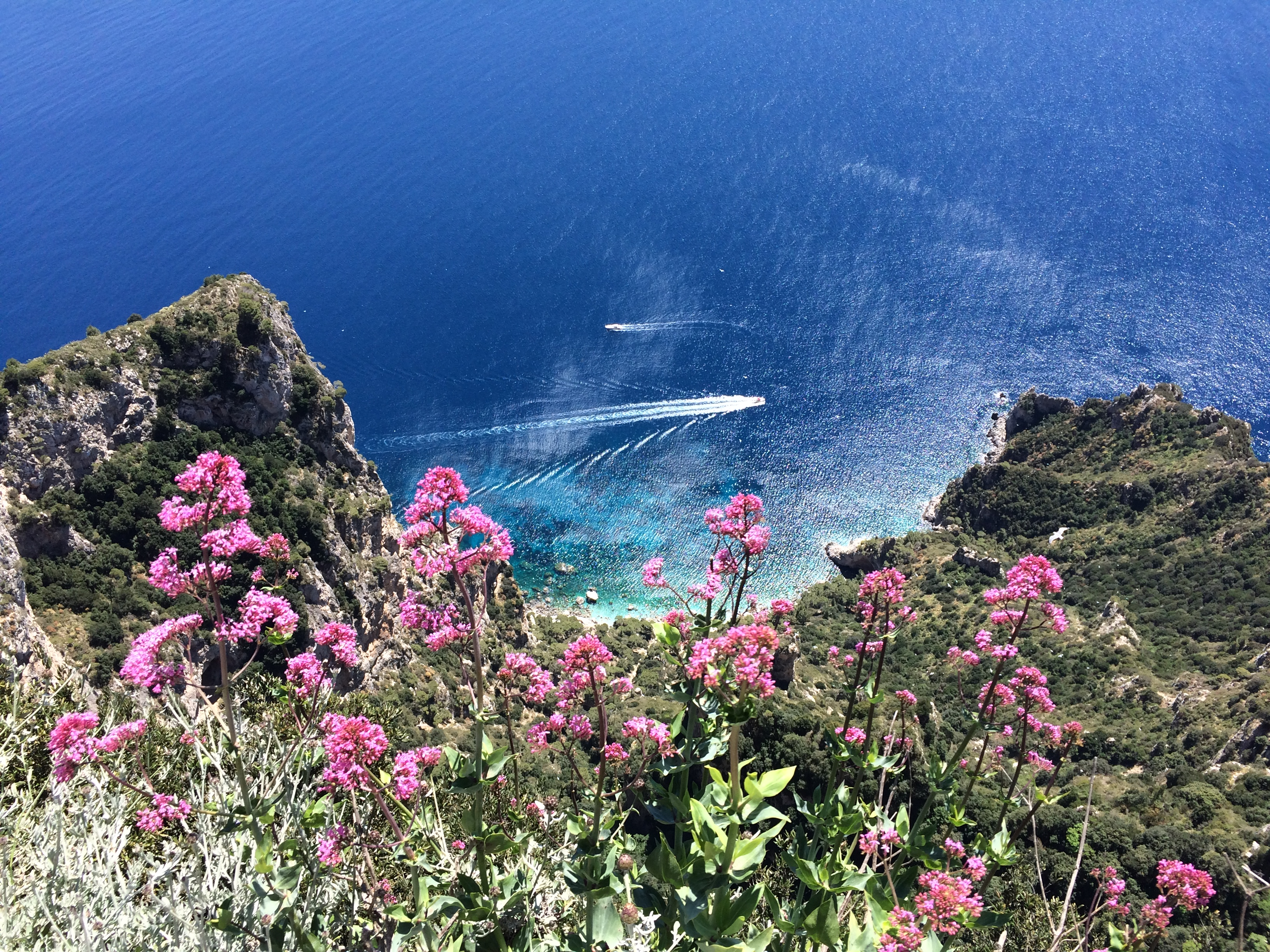 View from Monte Solaro, Capri / Photo: Vibes